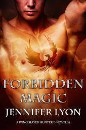 Forbidden Magic: A Novella