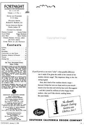 Fortnight PDF
