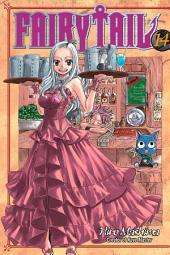 Fairy Tail: Volume 14