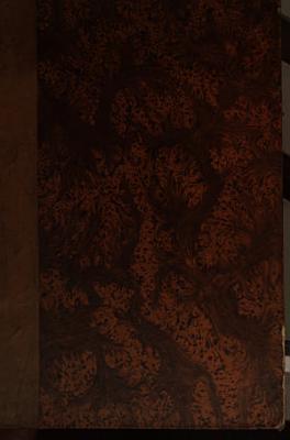 Lexicon Persico Latinum etymologicum cum linguis maxime cognatis Sanscrita et Zendica et Pehlevica comparatum  e lexicis persice scriptis Borh  ni Q  tiu  Haft Qulzum et Bah  ri agam et persico turcico     PDF