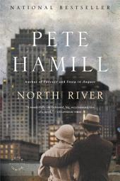 North River: A Novel