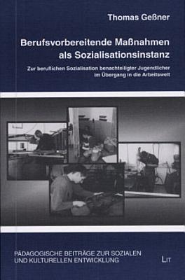 Berufsvorbereitende Massnahmen als Sozialisationsinstanz PDF