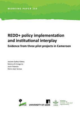 REDD  policy implementation and institutional interplay