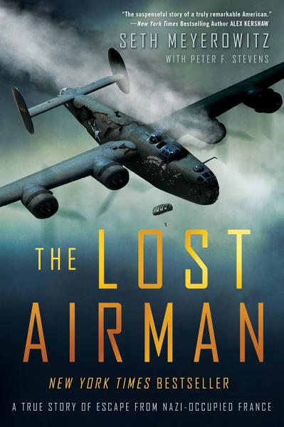 Download The Lost Airman Book