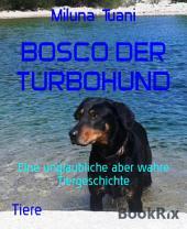 BOSCO DER TURBOHUND: Eine unglaubliche aber wahre Tiergeschichte