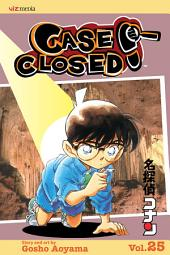 Case Closed, Vol. 25: Along Came a Spider
