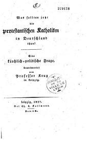 Was sollten jetzt die protestantischen Katholiken in Deutschland thun ?