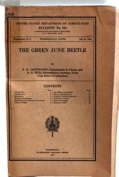 The Green June Beetle