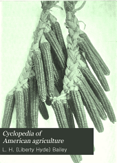 Cyclopedia of American Agriculture: Crops