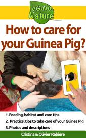 How to care for your Guinea Pig?: Small digital guide to take care of your pet