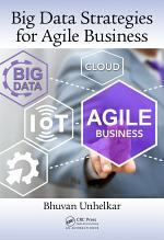 Big Data Strategies for Agile Business