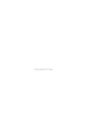 Ibero amerikanisches Archiv PDF