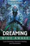 Dreaming Wide Awake PDF