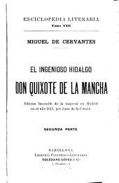 Don Quixote...