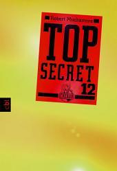 Top Secret 12 - Die Entscheidung