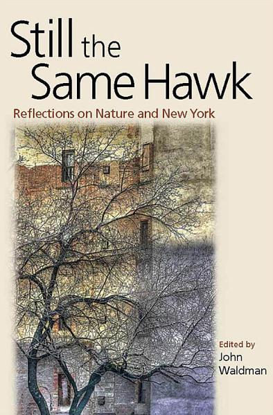Download Still the Same Hawk Book