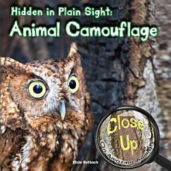 Hidden In Plain Sight Book PDF
