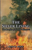 The Silver Lining PDF