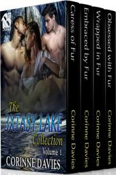 The 3xtasy Lake Collection, Volume 1 [Box Set 90]