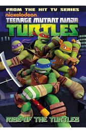 Teenage Mutant Ninja Turtles: Animated Vol. 1