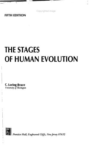 The Stages of Human Evolution
