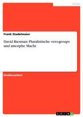 David Riesman: Pluralistische veto-groups und amorphe Macht