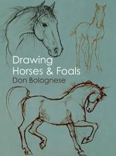 Drawing Horses and Foals