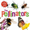 The Insects That Run Our World: the Pollinators