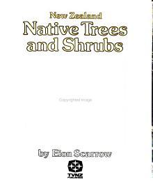 New Zealand Native Trees and Shrubs PDF