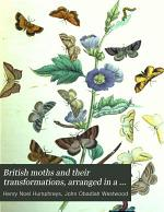 British moths and their transformations, arranged in a ser. of plates, with characters and descr. by J.O. Westwood