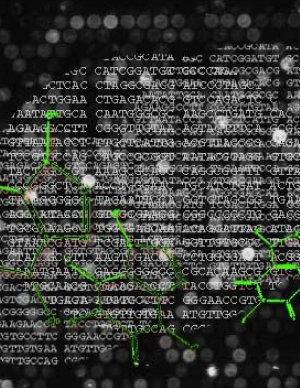 Cyberpunk Tao PDF
