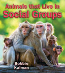 Animals That Live in Social Groups PDF
