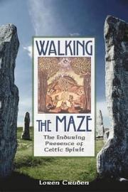 Walking the Maze PDF