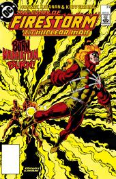 The Fury of Firestorm (1982-) #33