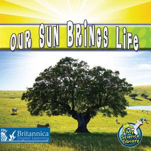 Our Sun Brings Life PDF