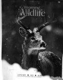 Wyoming Wild Life