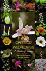 Cape Cod Wildflowers