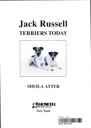 Jack Russell Terriers Today