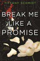 Break Me Like a Promise PDF