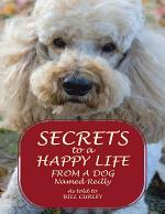 Secrets to a Happy Life from a Dog Named Reilly