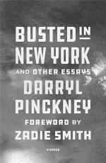 Busted in New York & Other Essays