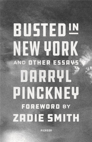 Busted in New York   Other Essays