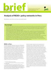 Analysis of REDD+ policy networks in Peru