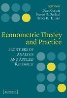 Econometric Theory and Practice PDF