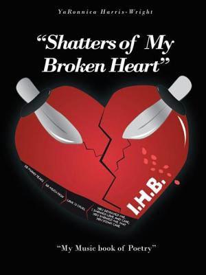 Shatters of My Broken Heart    PDF