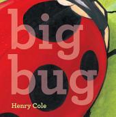 Big Bug: with audio recording