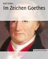 Im Zeichen Goethes: Essays um Goethe