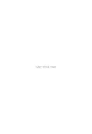 Economic Review of the Arab World PDF