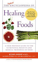 The Condensed Encyclopedia of Healing Foods PDF
