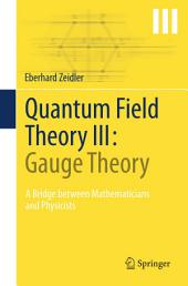 Quantum Field Theory III: Gauge Theory: A Bridge between Mathematicians and Physicists